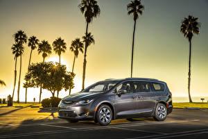 Desktop hintergrundbilder Chrysler Grau Palmengewächse Hybrid Autos 2017 Pacifica Hybrid Autos