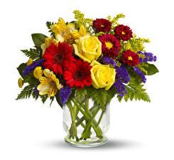 Fotos Sträuße Astern Rosen Rittersporne Gerbera Alstroemeria Vase Weißer hintergrund Blüte