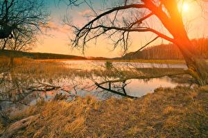 Hintergrundbilder Sonnenaufgänge und Sonnenuntergänge Herbst Flusse Ast Bäume Natur