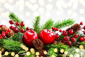 Fotos Feiertage Neujahr Äpfel Ast Zapfen Fichten
