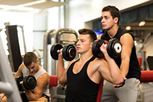 Fotos Mann Fitness Bodybuilding Unterhemd Hantel Jugendlich Trainer Körperliche Aktivität sportliches