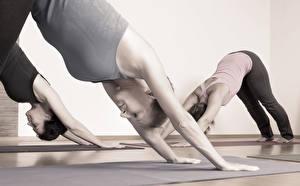 Fonds d'écran Fitness Yoga Exercice d'étirement class position Sport Filles