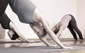 Fotos Fitness Yoga Dehnübungen class position Sport Mädchens