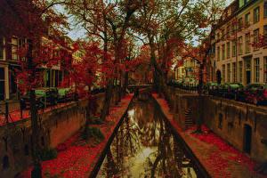 Photo Netherlands Autumn Building Utrecht Canal Street Trees Leaf Cities