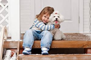 Bilder Hunde Kleine Mädchen Jeans Bologneser Lächeln Sitzt Treppe Kinder Tiere