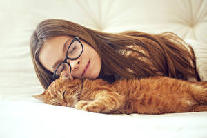 Image Little girls Brown haired Sleep Eyeglasses Kittens Red orange Hair child
