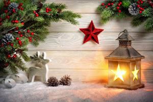 Bilder Neujahr Feiertage Hirsche Beere Bretter Ast Tannenbaum Zapfen Schnee Stern-Dekoration Laterne
