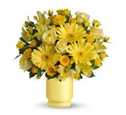 Bilder Blumensträuße Rosen Inkalilien Gerbera Vase Gelb Weißer hintergrund Blumen