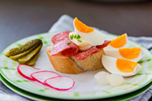 Fotos Butterbrot Gurke Radieschen Ei Teller Frühstück Lebensmittel