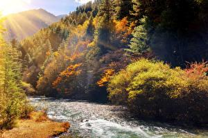 Sfondi desktop Cina Autunno Parco Fiume Foreste Raggi di luce Jiuzhai Valley National Park Natura