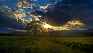 Hintergrundbilder Kanada Sonnenaufgänge und Sonnenuntergänge Himmel Acker Ebene Quebec Wolke Lichtstrahl Bäume Waterville Natur