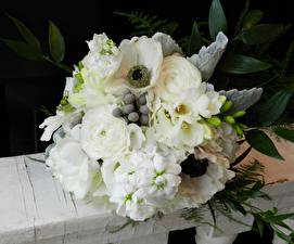 Hintergrundbilder Sträuße Windröschen Freesie Rosen Weiß Blüte