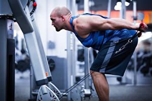 Hintergrundbilder Bodybuilding Fitness Mann Fitnessstudio Körperliche Aktivität