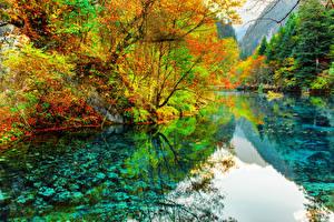Sfondi desktop Cina Parchi Fiumi Autunno Valle del Jiuzhaigou Alberi Valley Natura