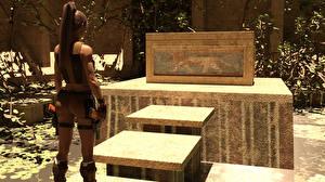 Bilder Tomb Raider Tomb Raider Legend Lara Croft Spiele Mädchens 3D-Grafik