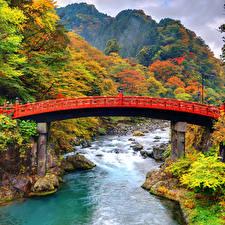壁纸、、日本、公園、川、橋、森林、山、秋、Shinkyo Bridge Nikko、自然