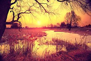 Hintergrundbilder Sonnenaufgänge und Sonnenuntergänge Flusse Herbst Bäume Ast Natur