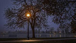 壁纸、、アメリカ合衆国、公園、湖、秋、街灯、夜、木、ベンチ、Denver Colorado、自然