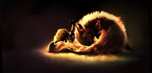 Wallpapers Foxes Hares Painting Art Two Animals