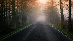 Picture Roads Morning Fog Nature