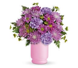 Papel de Parede Desktop Buquê Chrysanthemum Dianthus Fundo branco Vaso Flores