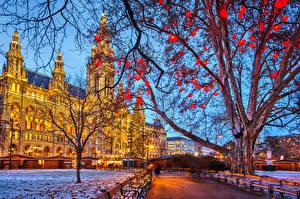 Hintergrundbilder Wien Österreich Haus Abend Neujahr Bäume Ast Turm Städte