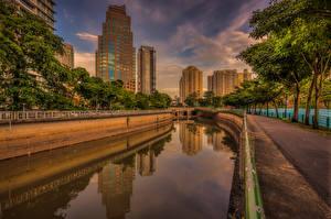 Photo Singapore Building Bridges Canal Trees Cities