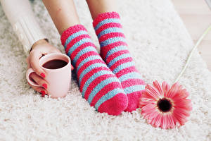 Images Hot chocolate drink Gerbera Socks Legs Cup