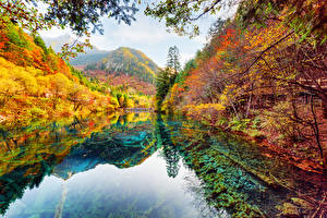 Photo Jiuzhaigou park China Parks Autumn Rivers Forest Landscape photography Nature