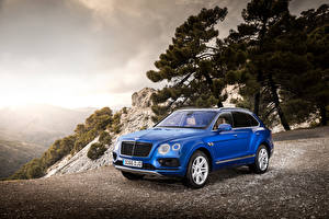Images Bentley Blue Metallic 2016 Bentayga Diesel Worldwide Cars