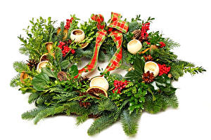 Hintergrundbilder Feiertage Neujahr Beere Weißer hintergrund Ast Design Band
