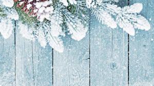 Hintergrundbilder Bretter Ast Schnee Zapfen Vorlage Grußkarte