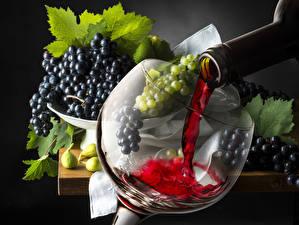 Fotos Wein Weintraube Getränke Weinglas Flasche Lebensmittel