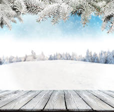 Pictures Winter Snow Wood planks Branches Template greeting card Nature