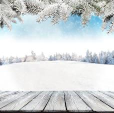 Bilder Winter Schnee Bretter Ast Vorlage Grußkarte Natur