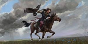 Hintergrundbilder Pferd Falken Laufsport Junger Mann Fantasy