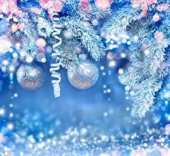 Bilder Neujahr Ast Kugeln Schnee Band