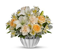 Papel de Parede Desktop Buquês Rosas Dianthus Alstroemeria Lírio Fundo branco Vaso Flores