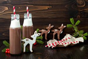 Fotos Neujahr Getränke Hirsche Schokolade Kakao Getränk Bretter Flasche 2 Ast Lebensmittel