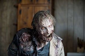 Pictures The Walking Dead TV Zombie Movies