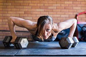 Image Fitness Dumbbells Hands Press-up Physical exercise push-ups Sport Girls