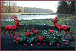 Bilder Neujahr Deutschland Park Hirsche Kerzen Kugeln Ast Grugapark Essen Natur