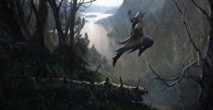 Images Assassin's Creed 3 Warrior Rain Jump Branches