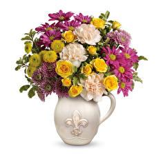Papel de Parede Desktop Buquês Rosas Crisântemos Dianthus Fundo branco Vaso Flores