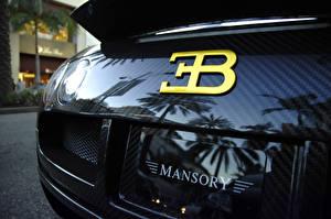 Fotos Hautnah BUGATTI Hinten Karbon veyron mansory Autos