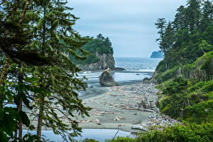 Hintergrundbilder USA Park See Washington Fichten Felsen Bucht Olympic National Park Natur