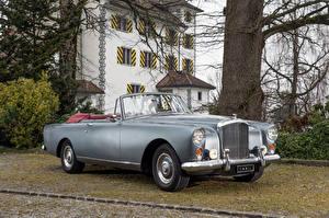 Papel de Parede Desktop Bentley Vintage Cinza Conversivel 1959-62 S2 Continental automóvel