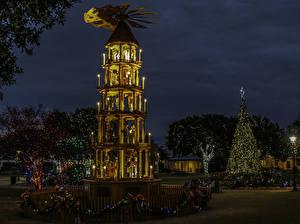 Picture USA Christmas Texas Night Christmas tree Fairy lights Street lights Fredericksburg
