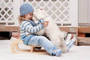 Fotos Hunde Kleine Mädchen Bologneser Mütze Schlitten Lächeln Sitzend Lacht Kinder