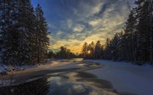 Hintergrundbilder Schweden Winter Abend Himmel Sonnenaufgänge und Sonnenuntergänge Fichten Schnee Arvika Natur